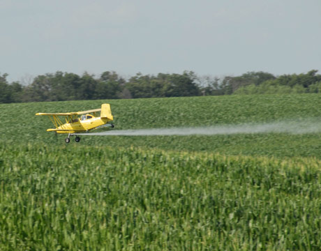 Spraying-Pesticides-Crops-L