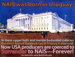 nais-born-in-uruguay-10191-20090407-3.jpg