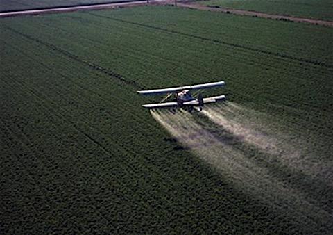 pesticidi555.jpg